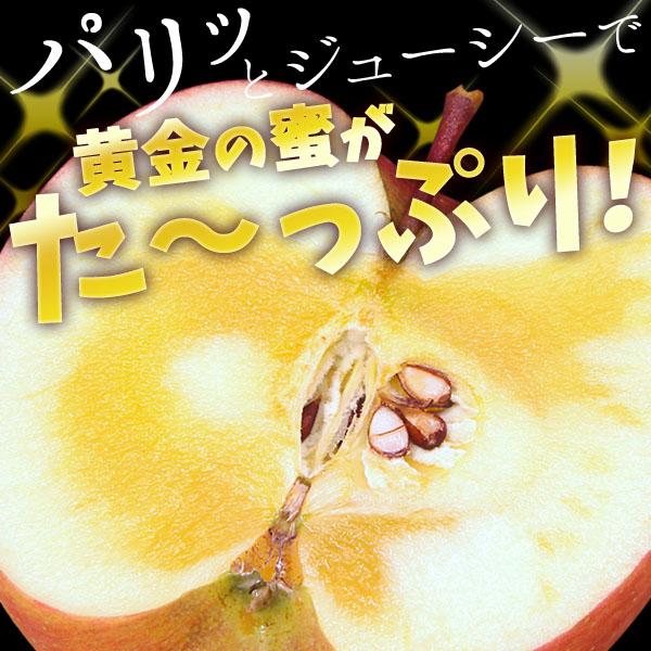 松川りんご_02