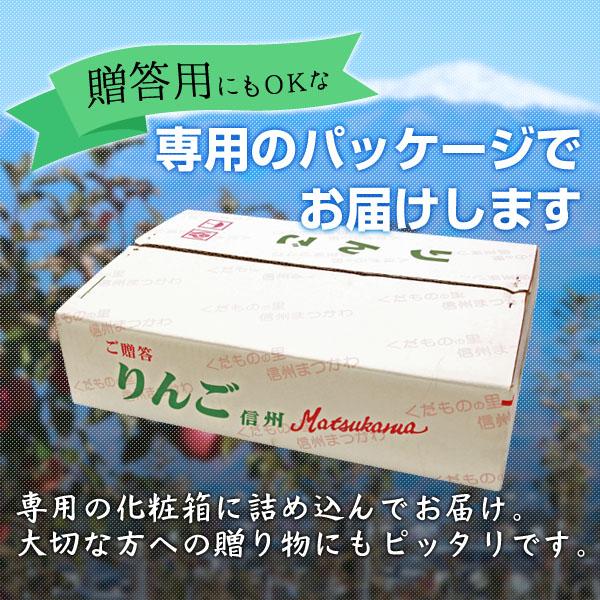 松川りんご_04