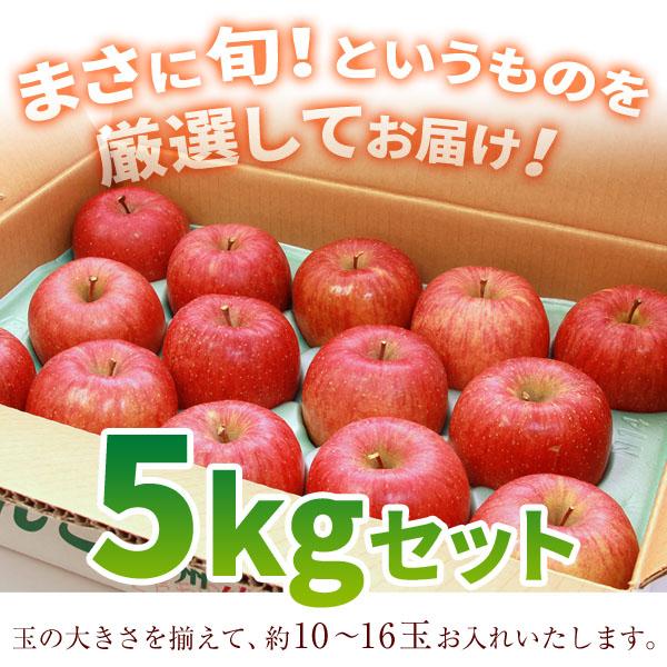 松川りんご_05