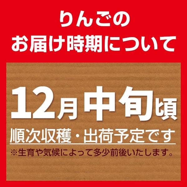 松川りんご_06