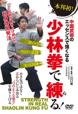 DVD 少林拳で練る! BABジャパン...