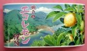 瀬戸田エコレモン饅頭