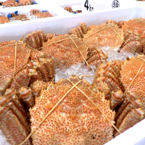 北海道の味!毛蟹 400g×3尾