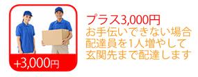 【+3,000円】ツーマン配達便