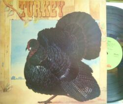【英Chrysalis】Wild Turkey/Turkey