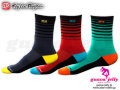 "Troy Lee Designs [ CAMBER SOCKS 10"" ] �����⿷�ɡ� �� �᡼����������"