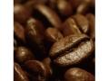 海外有機認証 イタリアンジェラート (コーヒー)イタリアンカフェ(オーガニックジェラート・アイス) デメター認証 イタリア産[125ml]【冷凍便】