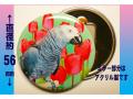 【ぴよぴよブランド】缶ミラー/ヨウム