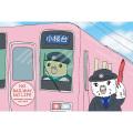 【Bird Island Cafe】ポストカードB/セキセイ・クリームハル&オパーリン紫◆クロネコDM便可能
