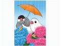 【FT&ぶんちょ屋】ポストカード・あじさい/文鳥◆クロネコDM便可能