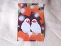 【FT&ぶんちょ屋】ポストカード・ほおずき/文鳥◆クロネコDM便可能