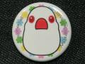 【FT&ぶんちょ屋】缶バッチ8/文鳥・白赤目◆クロネコDM便可能