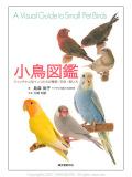 9993280【誠文堂新光社】小鳥図鑑