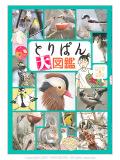 9993407【講談社】とりぱん大図鑑◆クロネコDM便可能