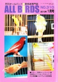 9993929【遊々社】ALL BIRDS (オールバード) 2013/1月号◆クロネコDM便可能