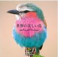9995045【パイ インターナショナル】世界の美しい鳥◆クロネコDM便可能
