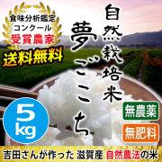 自然栽培米夢ごこち