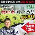 棚田米コシヒカリ 10kg 定期購入