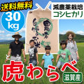 減農薬コシヒカリ 虎わらべ 30kgコース