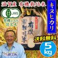 有機栽培米 近江米キヌヒカリ