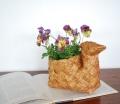 白樺のBird Basket(斑入り)アソート