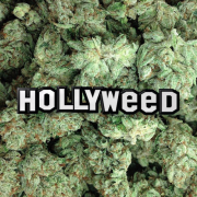 Yesterdays Co:Hollyweed ピンズ