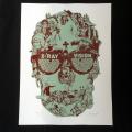 Perry Vasquez�ʥڥ�������������� X-Ray Vision ���륯�������ݥ�����BL
