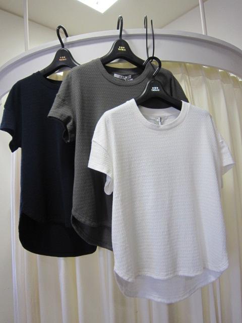 TATRAS 後ろ下がりTシャツ LTA16S8526