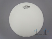 "Evans Drum Head G12 Coated 12"" B12G12"