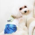 mugiwaraboushi_1.jpg
