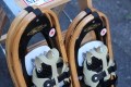 Guidetti Winter Rover Snowshoes