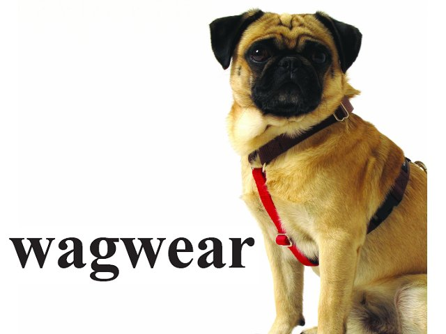 -レターパックOK- 4ヶ所で長さ調節可能 Contrast Nylon Harness (コントラスト ハーネス) S /M /L Wagwear [Made in USA]
