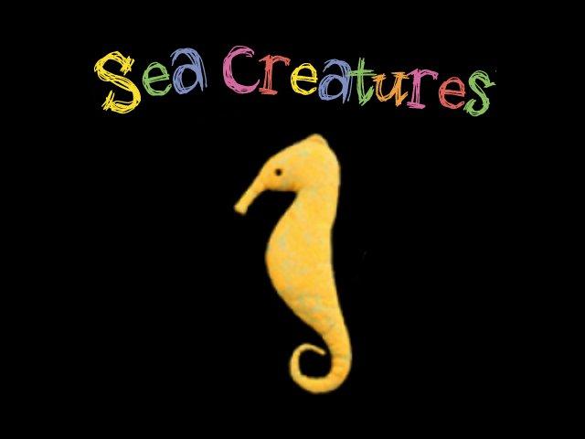 天然ウール100% Seahorse(タツノオトシゴ) A Cheerful Pet
