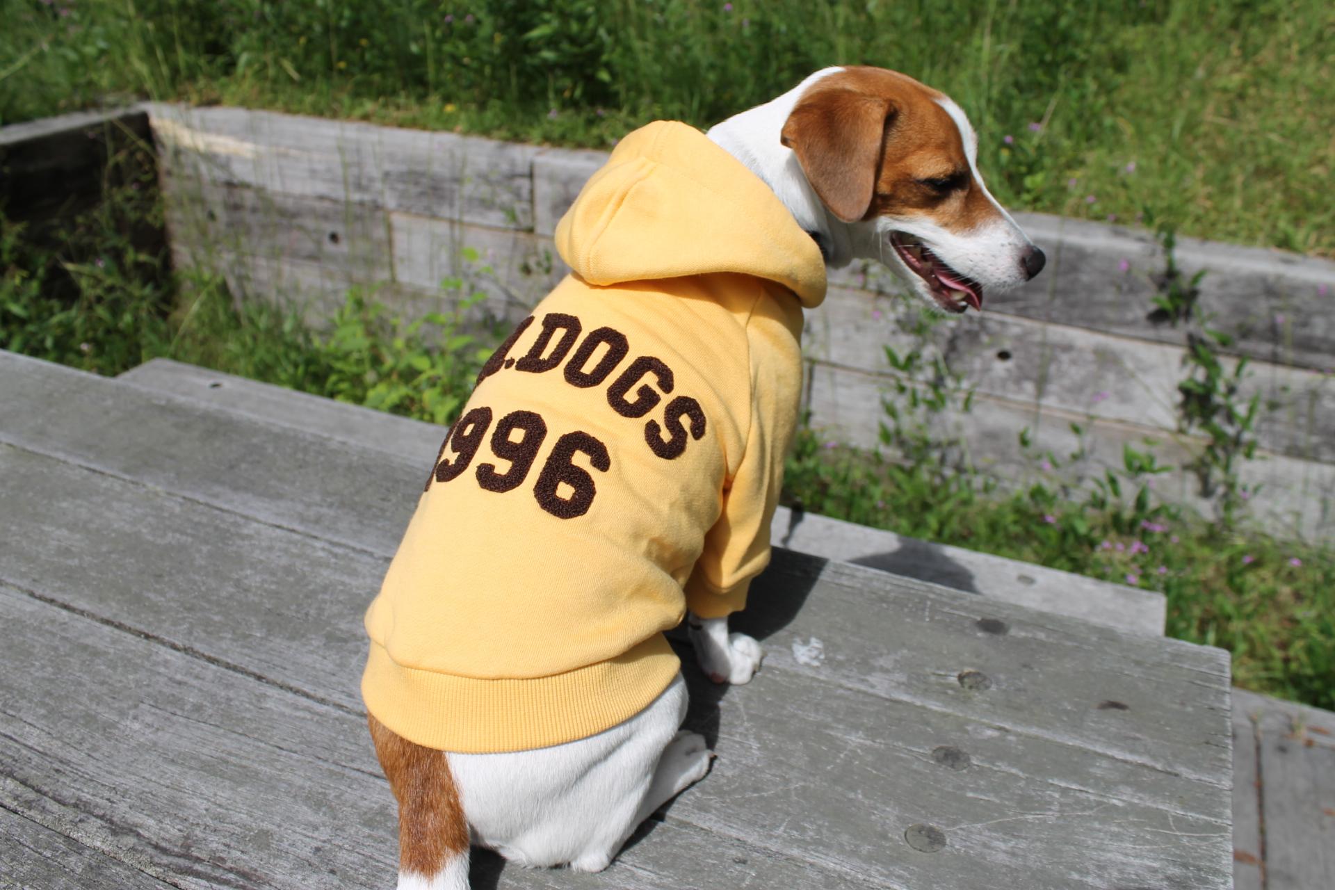 <犬と生活>20%OFF!モコモコロゴ入りカレッジパーカー 4号(無料お名前刺繍入れ可)