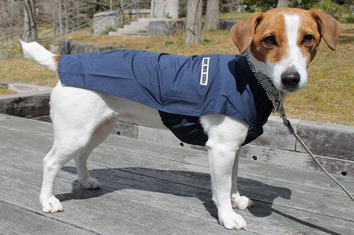 <犬と生活>着脱がとっても簡単なレインマント 4号