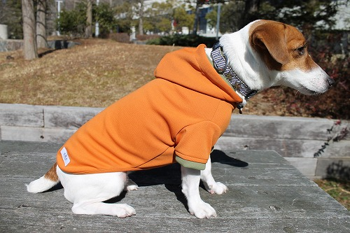 <犬と生活>雨の日OK!超撥水カジュアルパーカー レインパーカー 5号