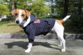 <犬と生活>20%OFF!フェルトロゴがお洒落なカレッジパーカーLWD 5号(無料お名前刺繍入れ可)