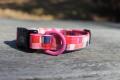 <堀商店>桜のようなかわいいピンクのカラー(Pixel Collar)