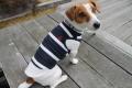 <犬と生活>太めのロープがおしゃれロープボーダータンク 5号(無料お名前刺繍入れ可)