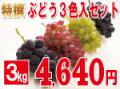 ぶどう3色入セット3kg 【発送期間】9月上旬〜10月上旬ごろ