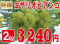 特撰ロザリオビアンコ2kg 【発送期間】9月上旬〜下旬