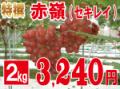 特撰赤嶺2kg 【発送期間】9月上旬〜10月上旬