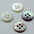 【本貝シャツ用】THE SHELL 2 白蝶貝 (11.5mm)