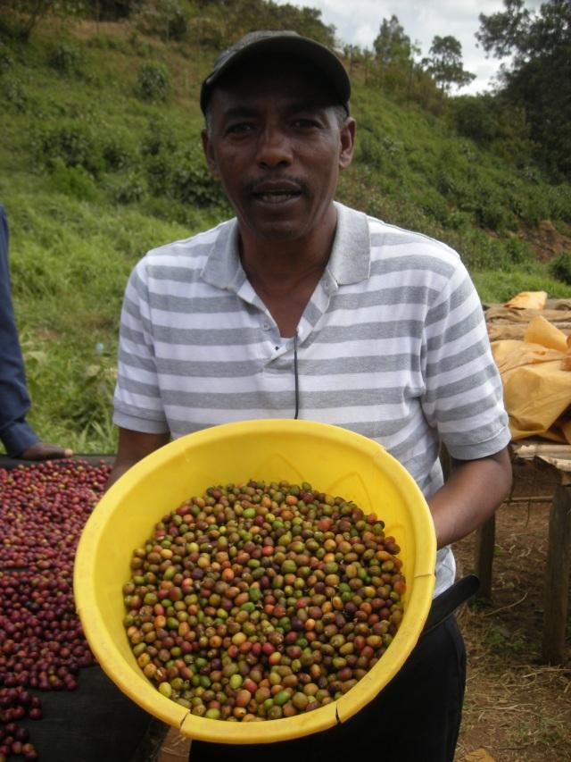 エチオピア グジ・シャキソ地区G1 ナチュラル 500g