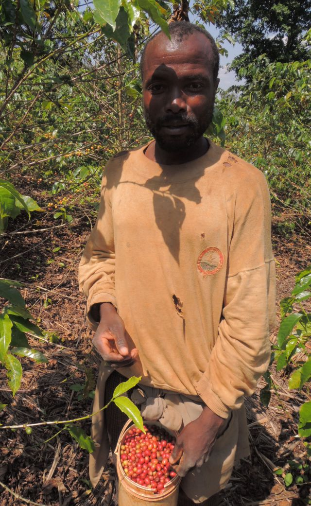 ルワンダ ドメーヌアバトゥンジ農園 200g
