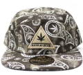 Official HAF PAISLEY MINERAL 5パネル ストラップバック Cap