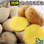 ≪送料無料≫ 【北海道産じゃがいも 熟成インカのめざめ5kg】 ジャガイモ 半年以上も熟成させ、甘さを引き出しました!ビックリするほどに濃いお芋本来の味をお楽しみください♪[当店他商品との同梱不可]