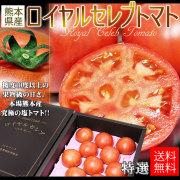 送料無料【ロイヤルセレブトマト 特選 11〜16玉】糖度10度以上!熊本県産 塩トマト 凝縮された旨みはまさにセレブ。[※常温便][※他商品との同梱不可]