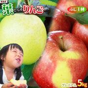 《送料無料》【葉とらずりんご ふじ+王林5kg プレミアム】 葉とらずりんご ゴールド農園 青森りんご [※産地直送のため同梱不可]