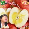 《送料無料》【葉とらずりんご ふじ5kg プレミアム】 葉とらずりんご ゴールド農園 青森りんご [※産地直送のため同梱不可]